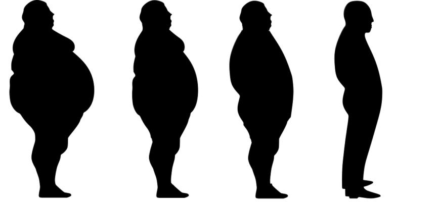 Lose Weight Fat Slim Diet Loss  - Tumisu / Pixabay